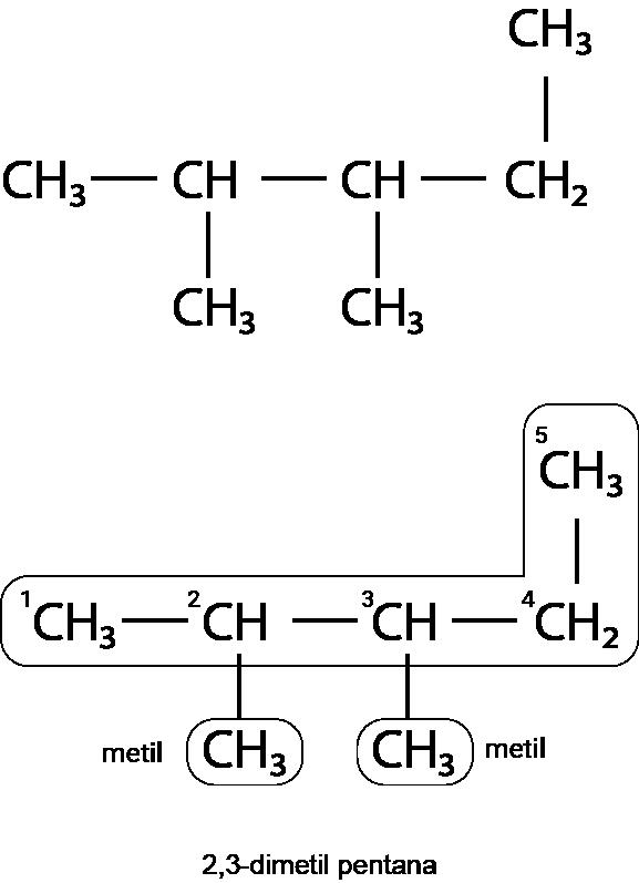 2,3-dimetil pentana