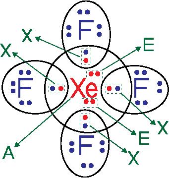 bentuk geometri molekul XeF4