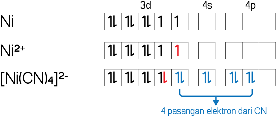 Hibridisasi orbital [Ni(CN)4]2-